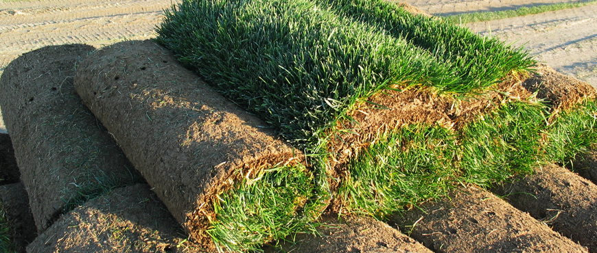 Sod installation in New Hampshire - Installing sod in
